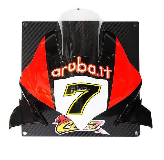 Chaz Davies Ducati F19 front fairing with wings