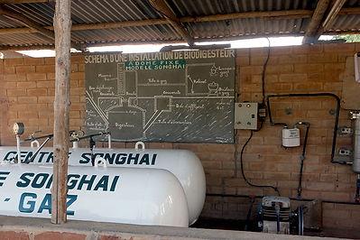 Autarcique, Viehzucht, Bio-Landwirtschaft, Togo, Ausbildung, Junge Menschen, Unabhängigkeit, erneubare Energie, Biogaz