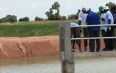 Autarcique, Viehzucht, Bio-Landwirtschaft, Togo, Ausbildung, Junge Menschen, Unabhängigkeit, Fischzucht