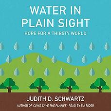 water in plain sight.jpg