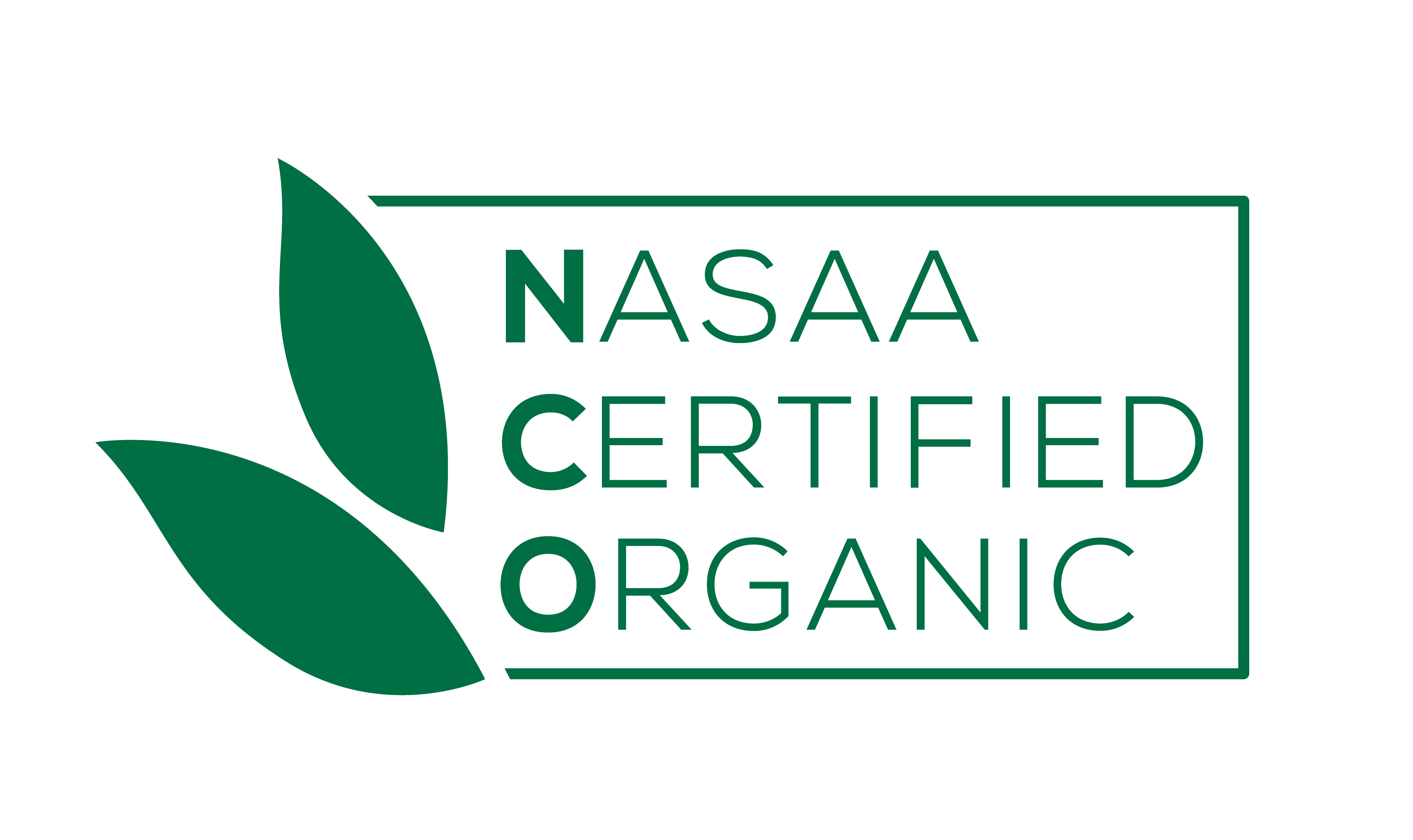 NCO_NEW_MASTER_Logo_RGB