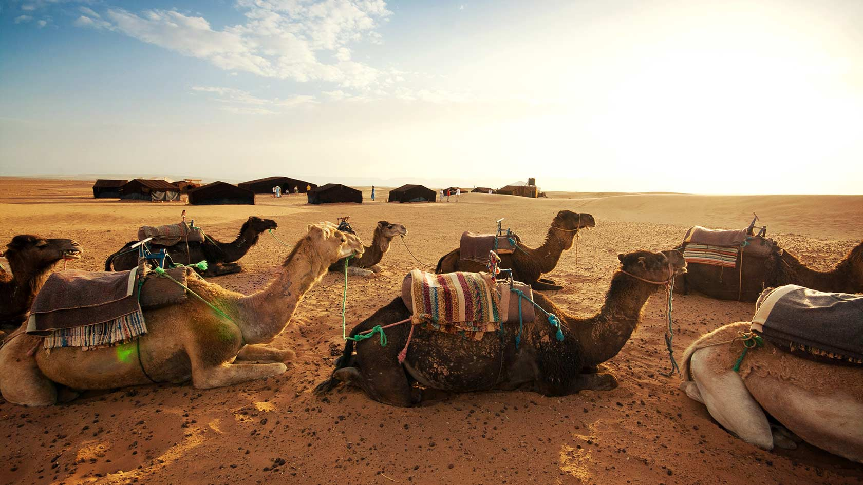 lets-travel-to-morocco-africa-with-martin-dudek-featured