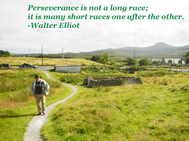 Perseverance is not...