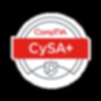 CYSA_edited.png