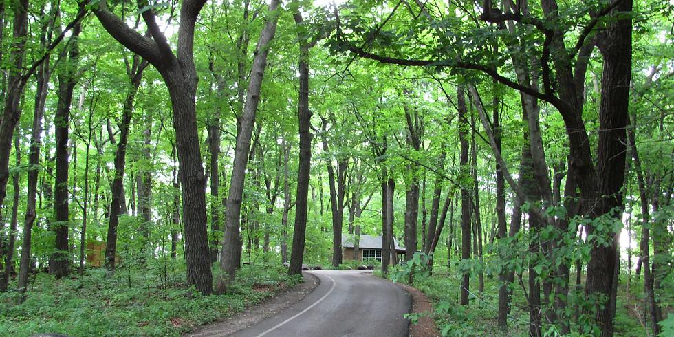 Minnesota Landscape Arboretum and Ancient Gneiss
