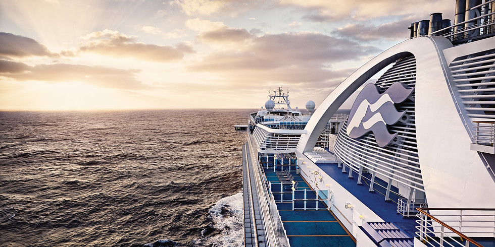 VENDOR CHAT: Princess Cruise Lines
