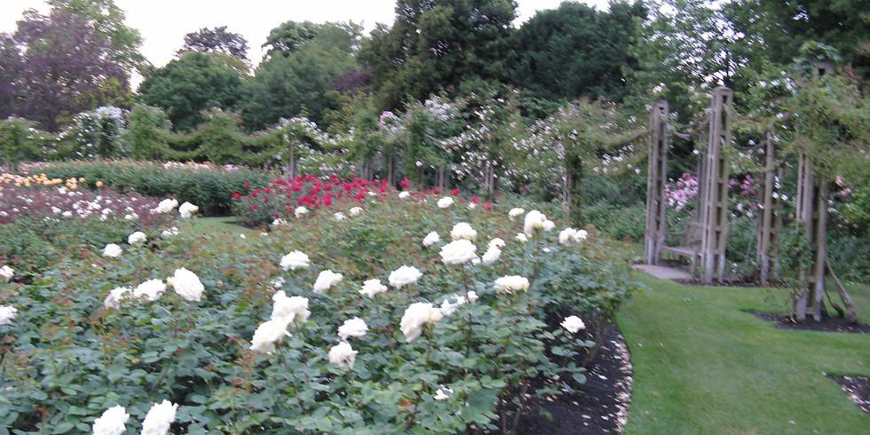 Horticulture Gathering: Regents Park