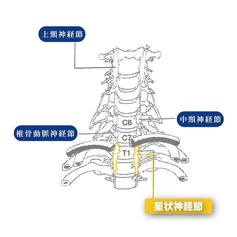 星状神経節ブロック