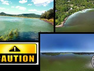Cyanobacteria in Darlings Lake