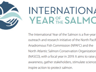 2019 Fishing Regulations