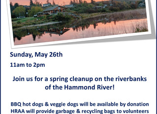 Post-Flood Riverbank Cleanup & BBQ