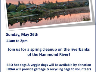 Post-Flood Riverbank Cleanup & BBQ