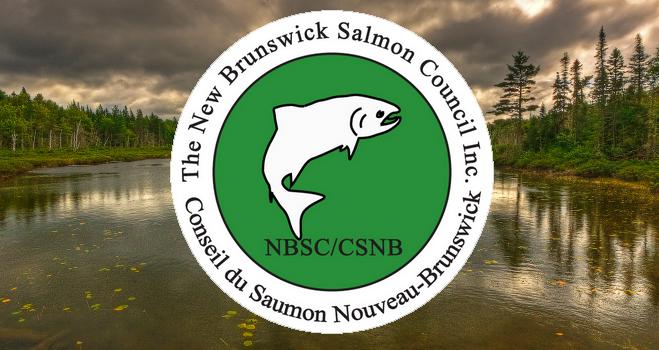 NB Salmon Council 1.png