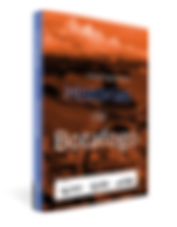 divulgação-livro3d-LOW.png