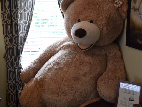 Big Bear needs a name and a home!          Silent Auction Fundraiser!