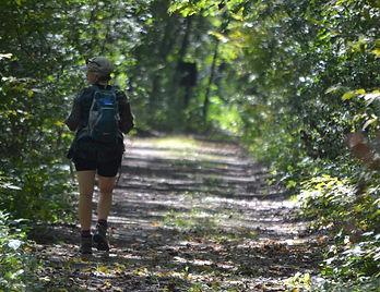 me trail.jpg