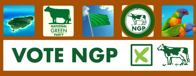 NGP-Header-FBOOK02.png