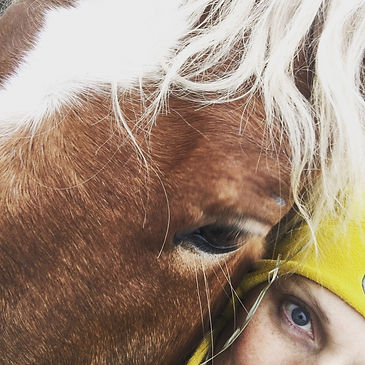 regard d'un cheval et d'une femme
