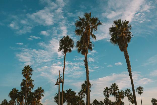 Califorrnia I.jpg