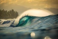 Hawaii_Visual_HenriquePinguim-0803.jpg