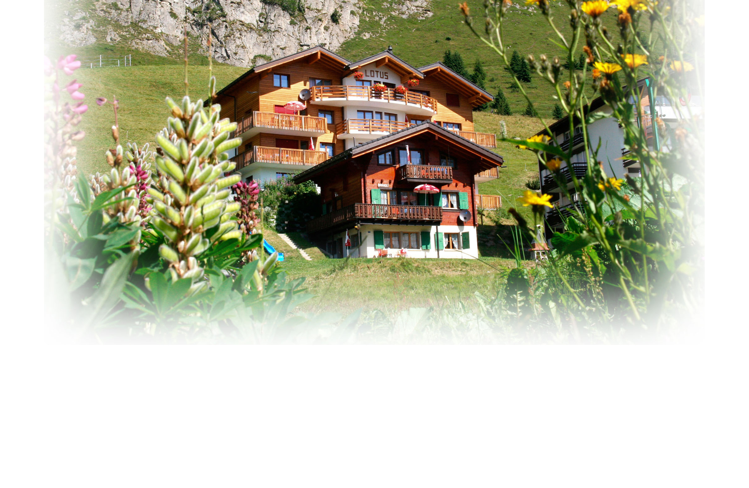 ALETSCH-APARTMENTS-1.jpg
