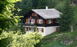 chalets-IMG_4286_1