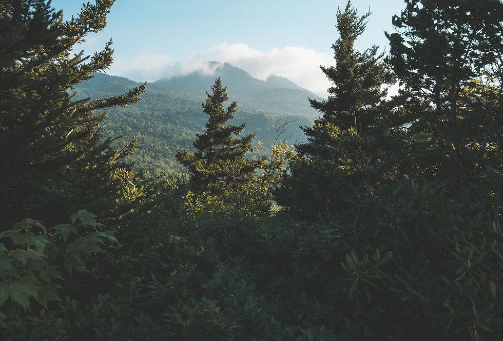 Coming Soon: Highlands, North Carolina