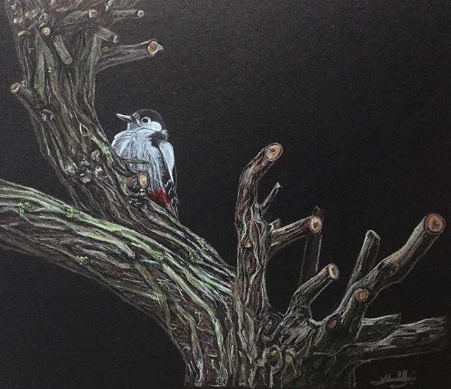 Oiseau russe