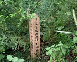 天皇陛下記念植樹