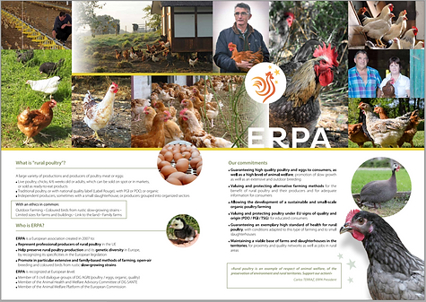 Brochure ERPA EN centre page.PNG