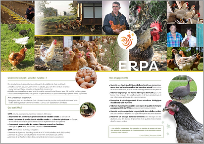 Brochure ERPA FR page centrale.PNG