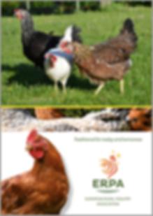 Brochure ERPA FR.PNG