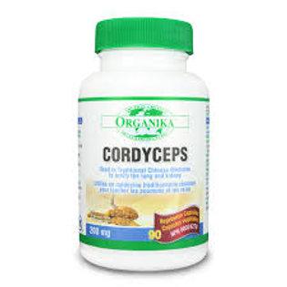 Cordyceps - Organika