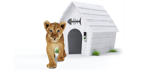 adt lion.png