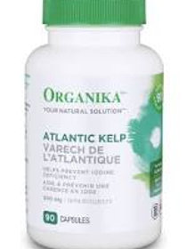 Atlantic Kelp - Organika