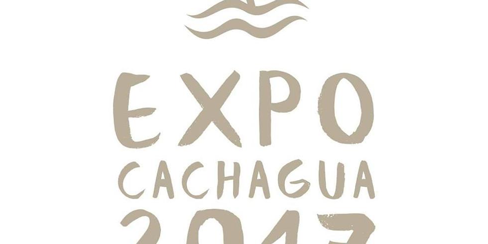 Expo Cachagua 2017