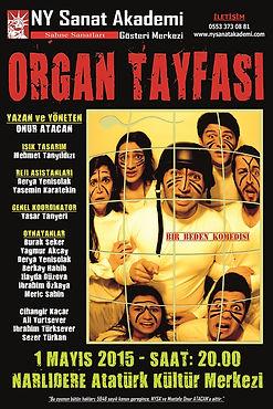 ORGAN TAYFASI (2).jpg