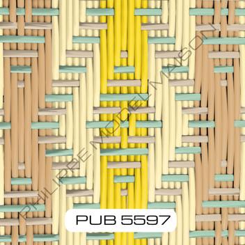 PUB 5597_small.jpg