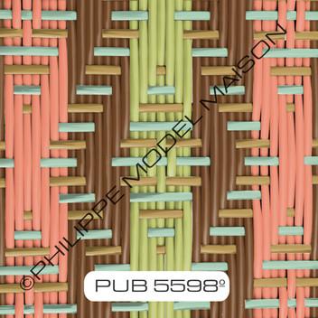 PUB 5598_small.jpg