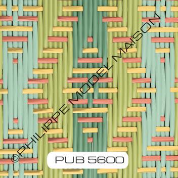 PUB 5600_small.jpg