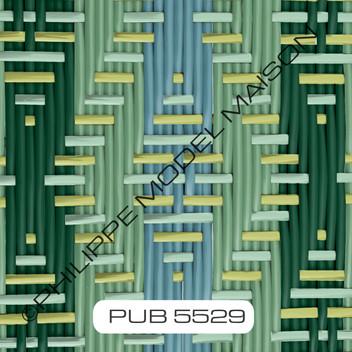 PUB 5529_small.jpg