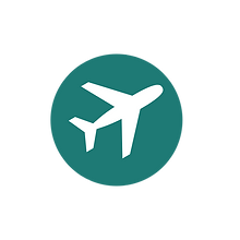 logo new plane.png