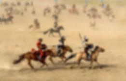 horse-1567608_1920.jpg