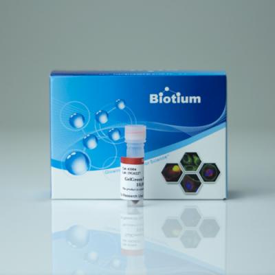 GelGreen® Nucleic Acid Gel Stain 10,000x in DMSO