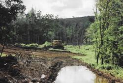 Mill Creek 1995