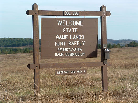 Piney Tract Sign - Mike Leahy.JPG