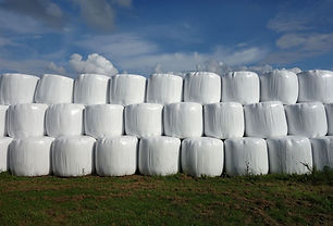 Neatly_stacked_silage_bales.jpg