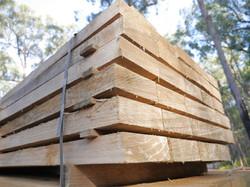 MSV Trees - Treated pine sleepers