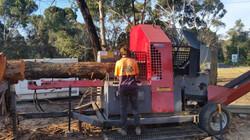 Palex 100s Firewood Processor