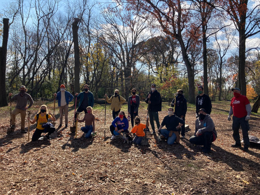 Volunteering with Love Your Park Fall Service Day: Fall 2020